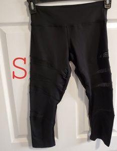 Adidas Mesh Workout Pants / Leggings